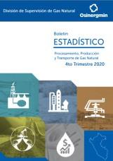 Boletín Estadístico de las actividades de la DSGN