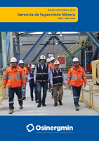 Boletín informativo GSM 2019 - I Trimestre
