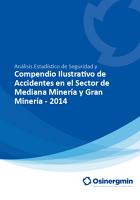 Compendio Ilustrativo de Accidentes en el Sector de Mediana Minería y Gran Minería - 2014